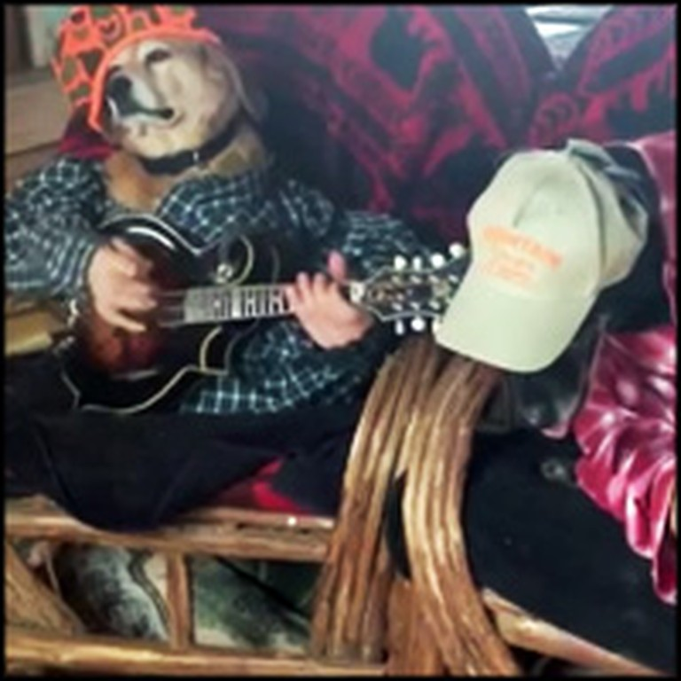 2 Hilarious Dogs Play the Banjo Together