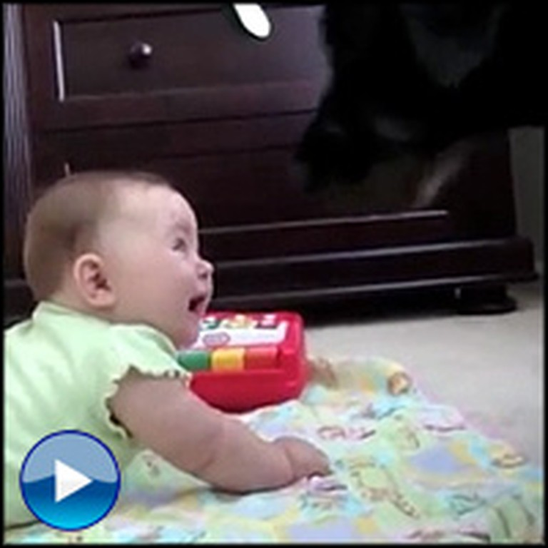 A Baby's Reaction to a Barking Dog is the Cutest Thing You'll See Today!