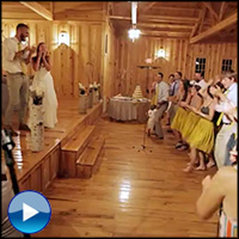 Bride & Groom Are Surprised by a HUGE Flash Mob They Never Saw Coming