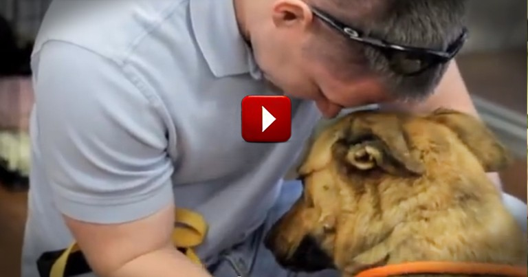 You Can FEEL the Love When This Sweet Dog is Reunited with Her Family