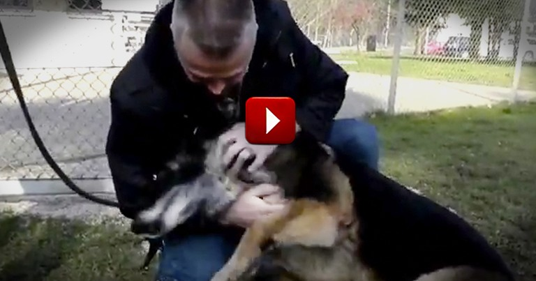 Military Man Reuniting with His Pup May be Best 18 Seconds of Your Day