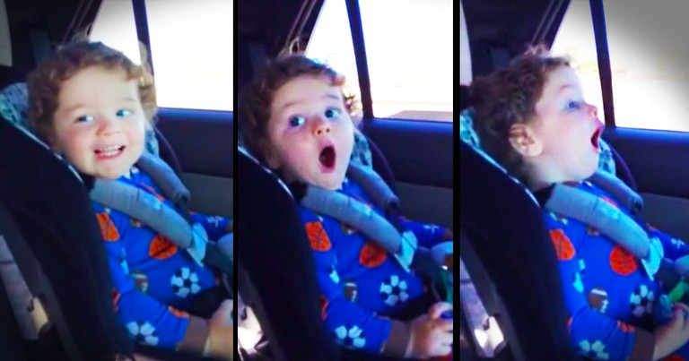 What Happened In This Car Seat Was Pure AWESOMENESS. Now I'm Roaring with Laughter!