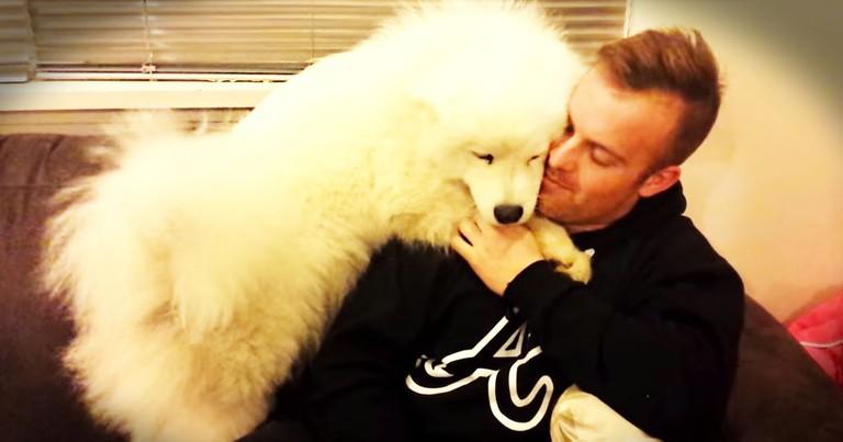 Fluffy Pup REALLY Wants A Hug