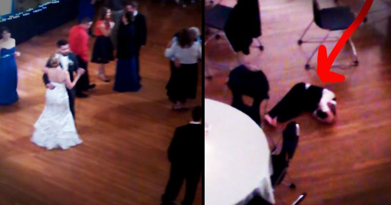 Little Boy 'Gets Down' On Dance Floor--Literally!