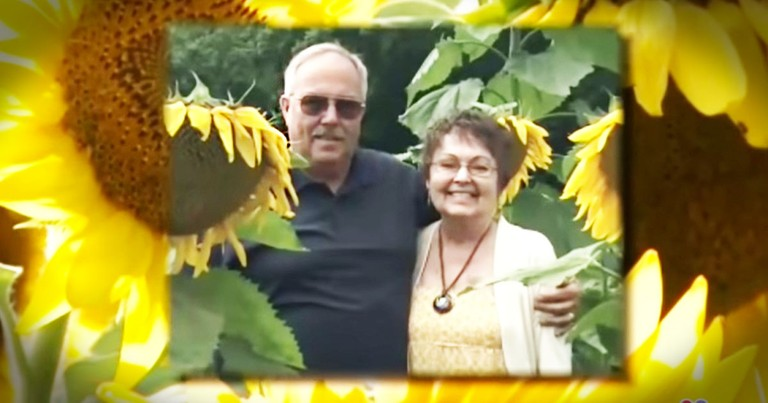 He Planted Sunflowers To Honor His Wife's Memory And You Have To See The Result!