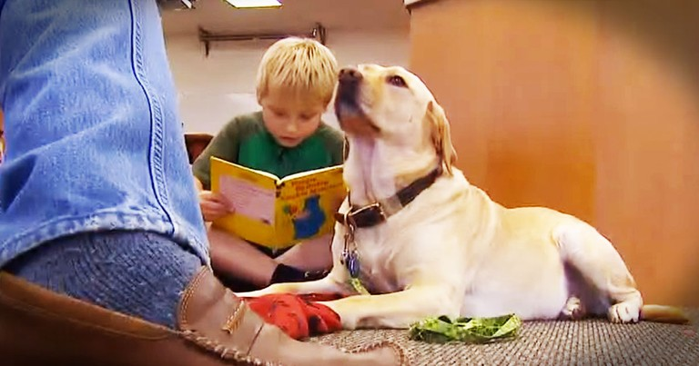 Kids Are Reading To Dogs For The Best Reason