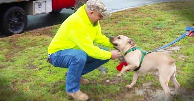 Dog Find His Forever Home After 2 Years In The Shelter