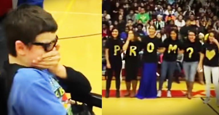 Promposal For Special Needs Student Left Me In Tears