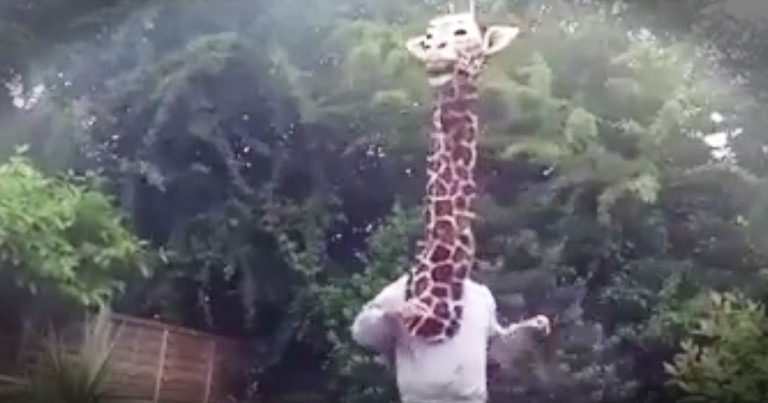 Hilarious Giraffe Puppet's Lip-Dub Will Leave You Laughing