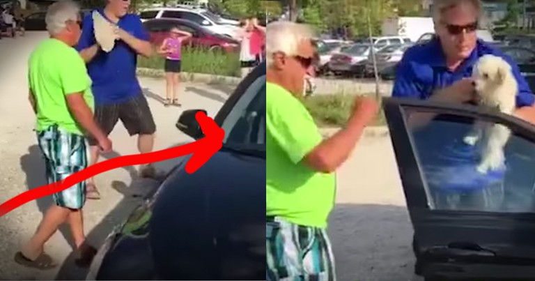 Men Bravely Rescue Dog In A Hot Car