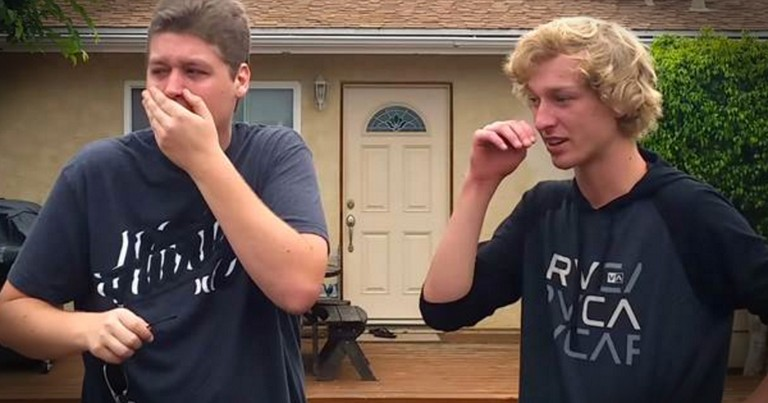 Colorblind Brother's Seeing Color For The First Time Is Tear-Jerking