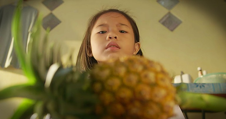 Mother Teaches Her Daughter Life Lessons Using An Ordinary Pineapple