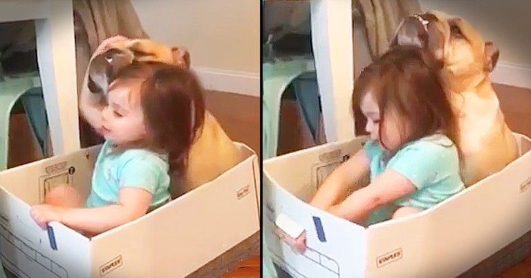 Little Girl And Her Puppy Sing 'Row, Row, Row Your Boat'