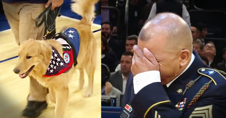 Vet Thinks He's Getting Honored With A Jersey And Meets His New Best Friend