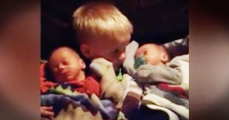 Mom Finally Lets Toddler Hold Baby Brothers, But She Is Surprised When He Won't Let Them Go