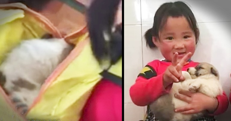 Kindergartener Hides Stray Puppy In Her Backpack
