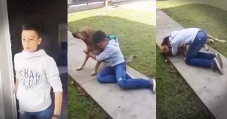 Little Boy Has A Beautifully Tearful Reunion With His Lost Dog