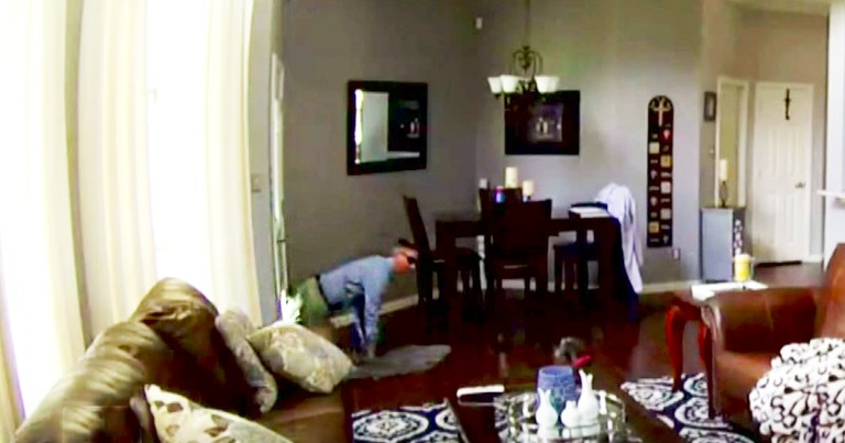 Doggy Doors Could Offer Easy Entry For Thieves