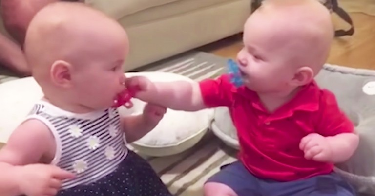 Silly Twin Babies Steel Each Others Pacifiers