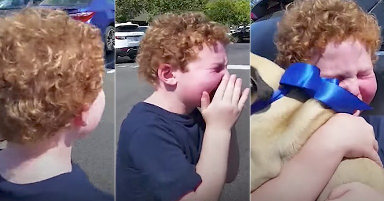 Boy's Heartwarming Reaction To Getting To Keep His Foster Puppy