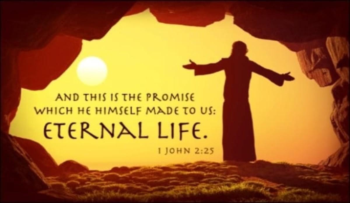 Eternal Life Bible Verses