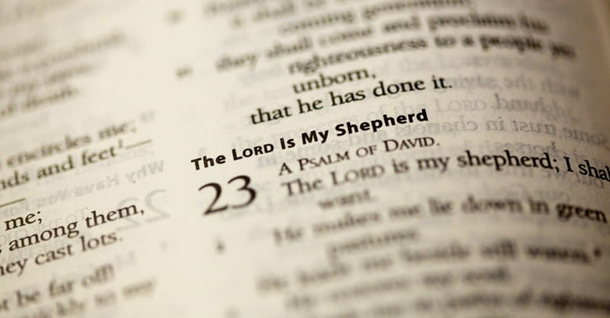 The Amazing Riches of Psalm 23