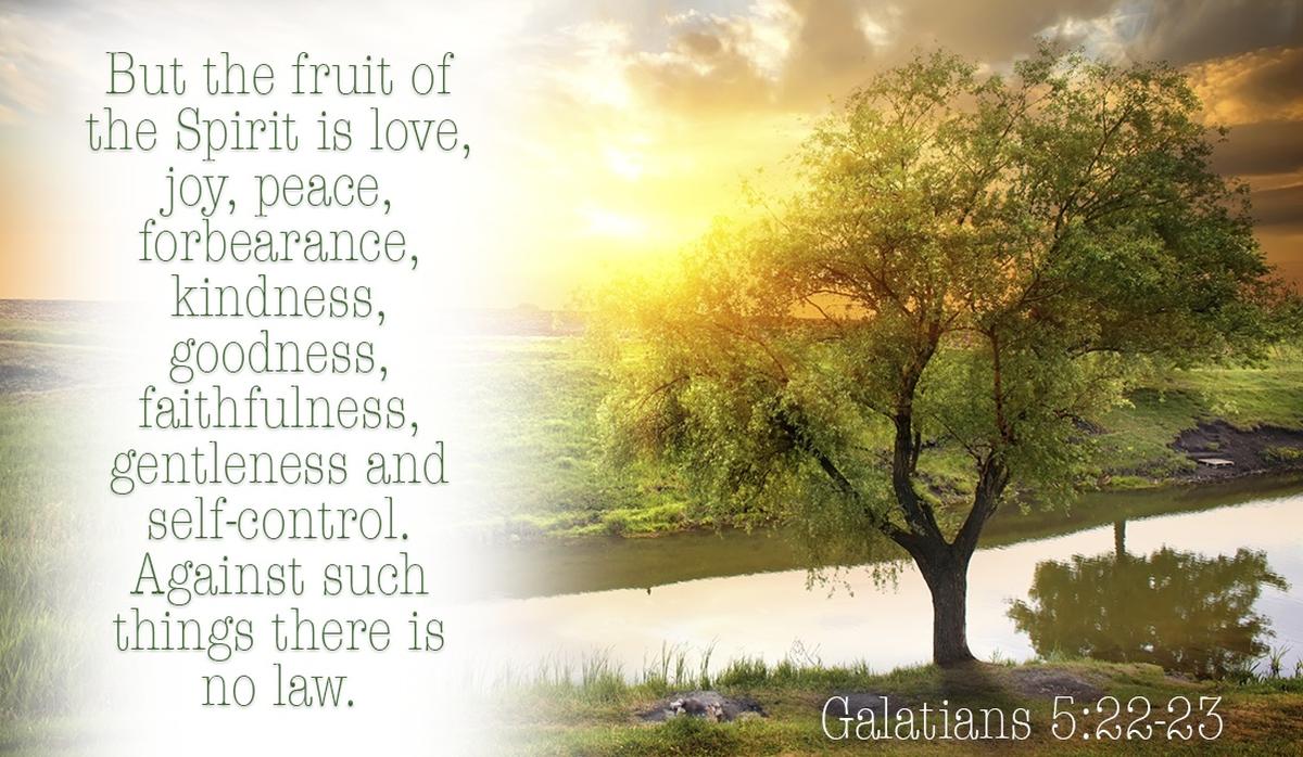 Is God's fruit showing through you? - Galatians 5:22-23