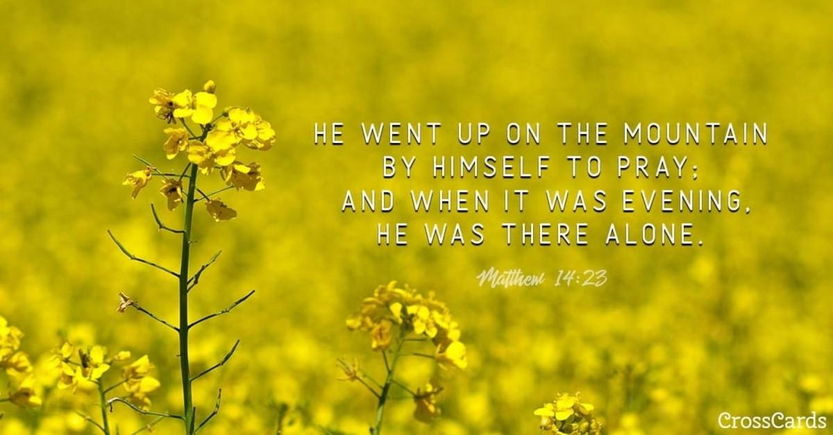 Matthew 14:23