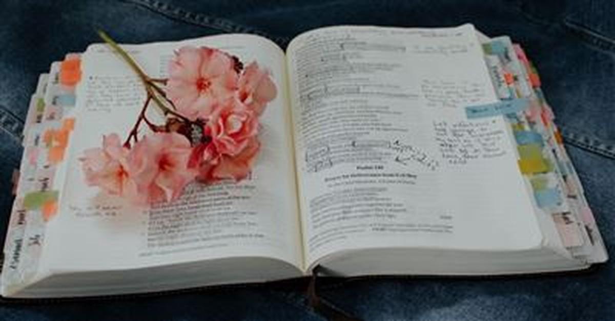 Bible Verses about Women