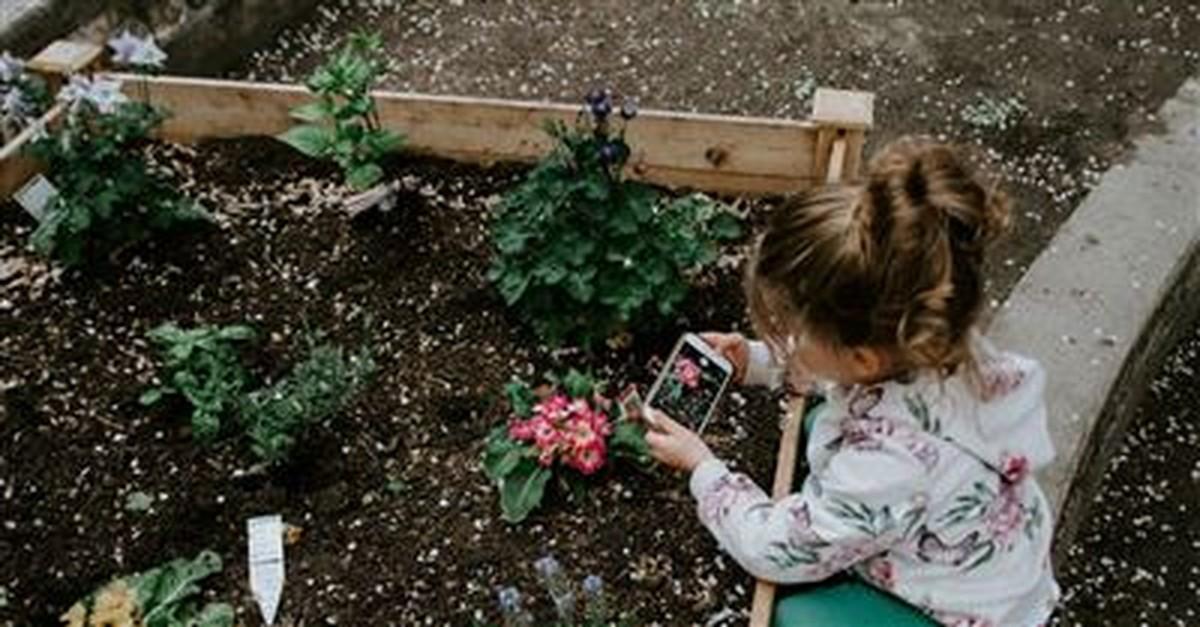 8. Grow a Garden Together