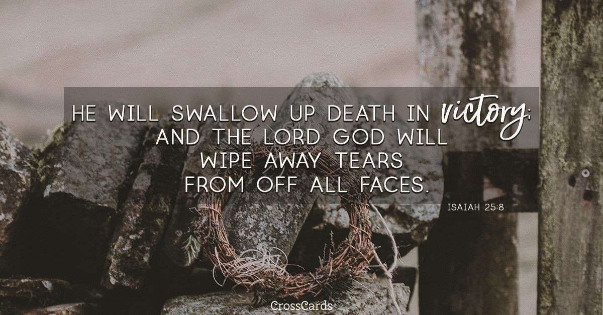 Your Daily Verse - Isaiah 25:8