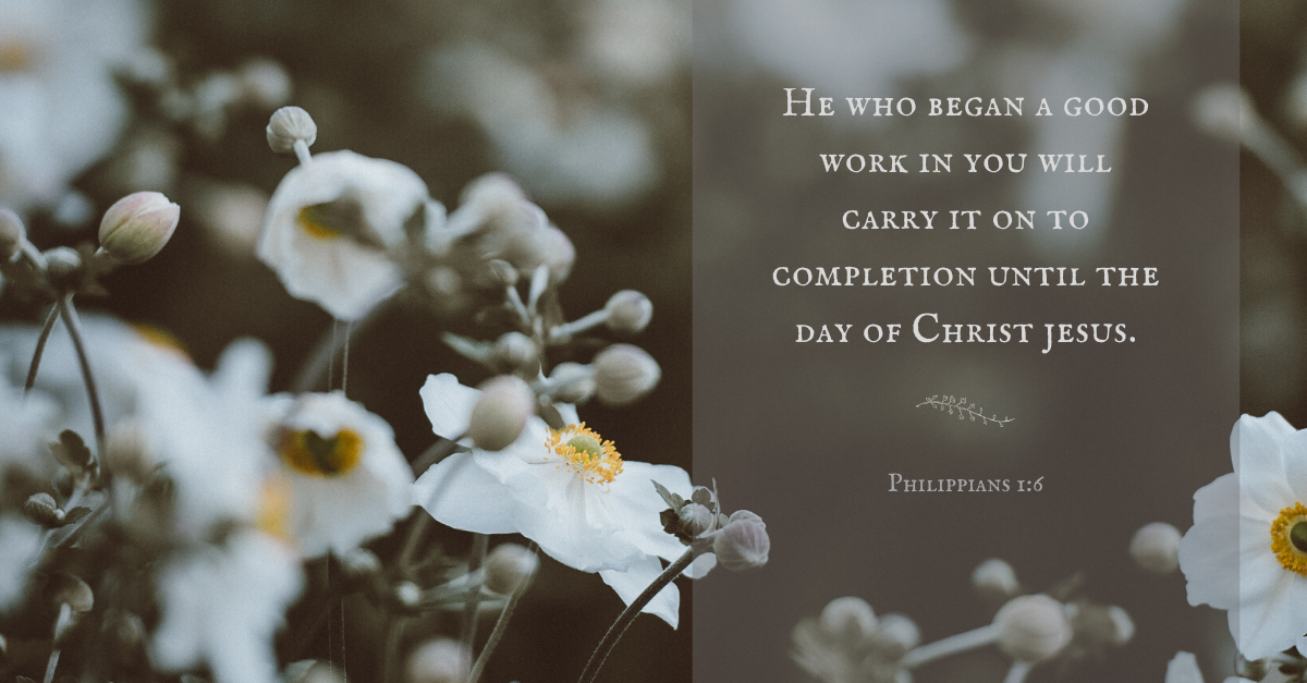 Your Daily Verse - Philippians 1:6