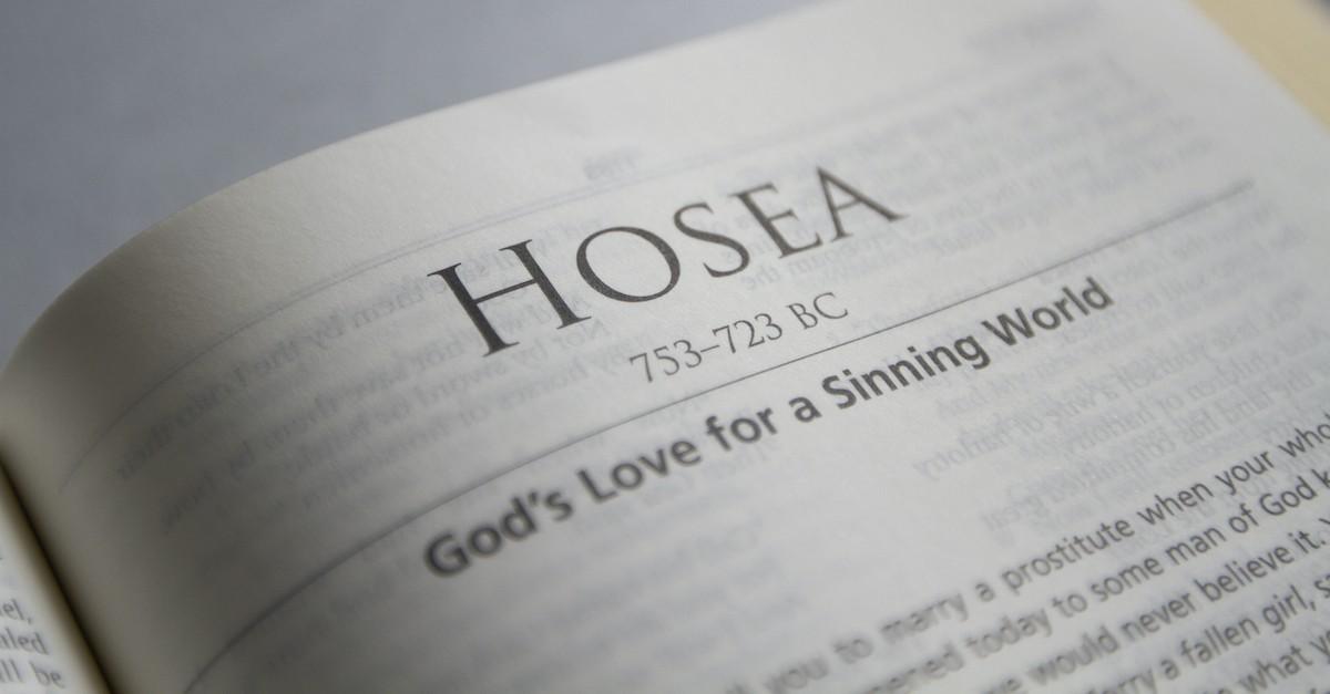 2. Hosea and Gomer