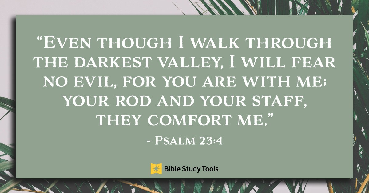 Bible Verses From Psalms
