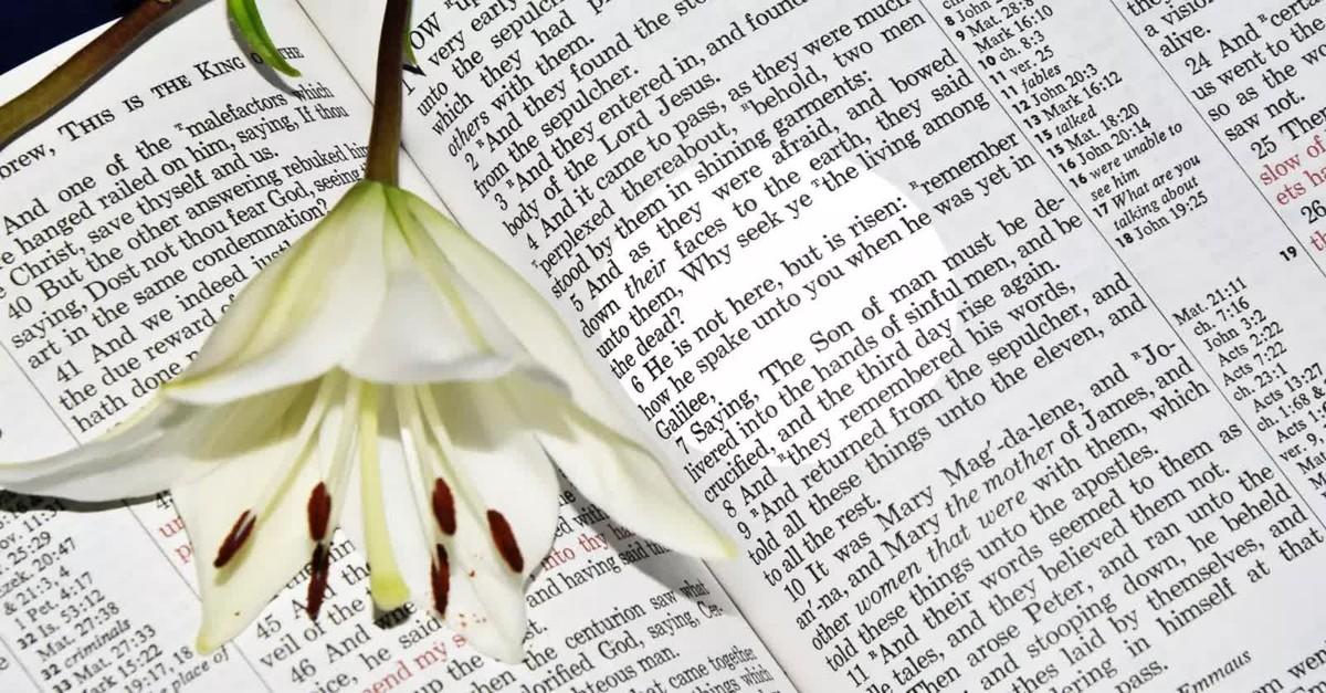 He Is Risen Bible Verses