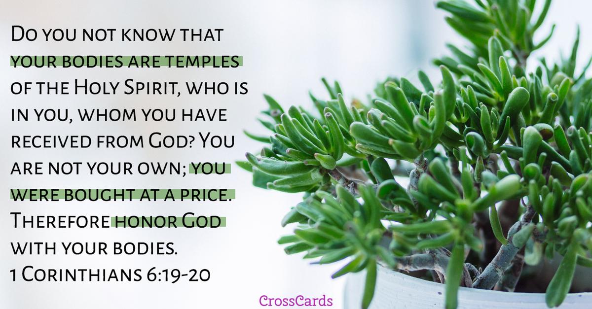 1 Corinthians 6:19-20 Scripture card