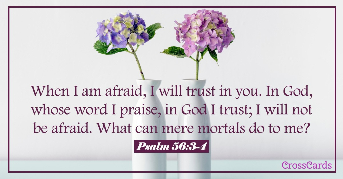 Psalm 56 text with hydrangea flowers in vases in background