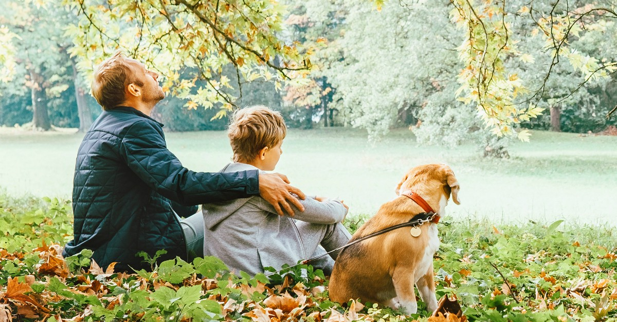 Dad, son and dog sitting by a lake in the Fall