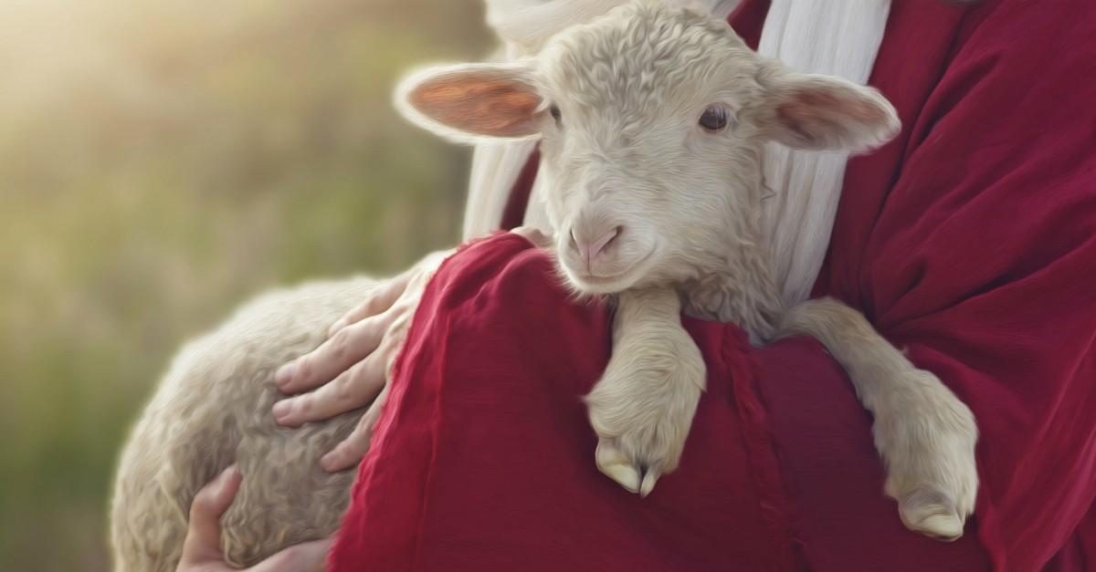 Why Did John the Baptist Call Jesus the 'Lamb of God'?