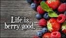 Life Berry Good