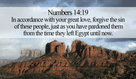 God has pardoned many people, learn from Him! - Numbers 14:19