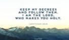 Leviticus 20:8