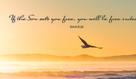 John 8:36 - You Are Free Indeed!