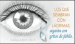 Salmos 126:5  BLA