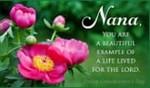 Nana - Godly Example