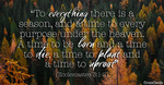 Ecclesiastes 3:1-2 - A Season for Everything