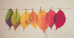 What the Change of Seasons Shows Us About Our Faith
