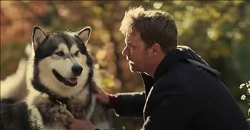 'Hero Dog: The Journey Home' Official Movie Trailer