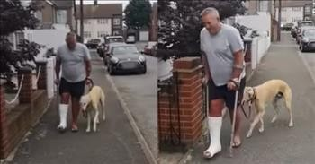 Funny Dog Pretends To Have A Limp Just Like His Owner