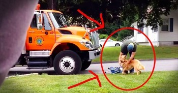 Garbage Man And Golden Retriever Will Make Your Smile With Unlikely